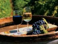 Большой винный тур в Грузию